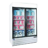 2 Section Glass Door Merchandiser Freezer